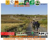 2014-07-12 20.44.15 P1340361 marcha 12 jul grup1 Nes