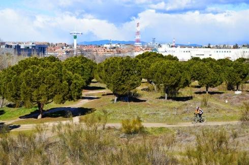 Campamento ciclista retamares meaques